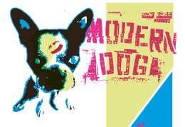 modern dog
