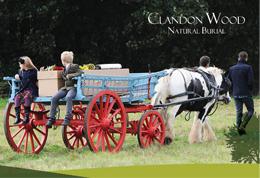 Clandon Wood